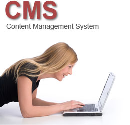CMS - Content Management mit design-X.de